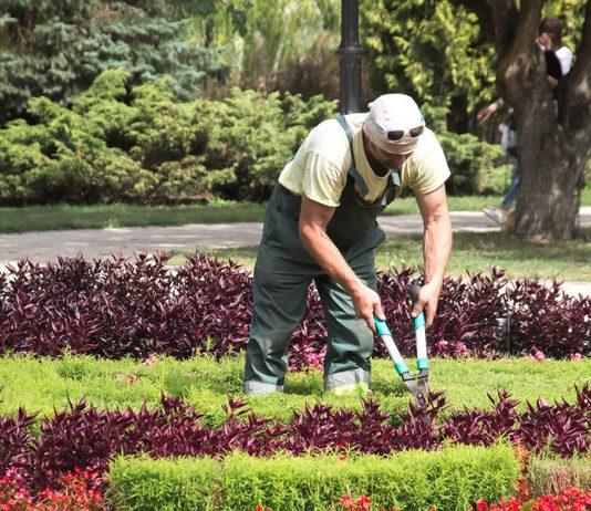 jardinier-paysagiste